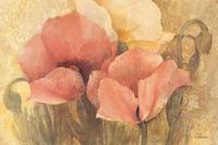 Albena Hristova - Poppy Delight