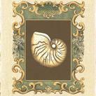 Chariklia Zarris - Mermaid's Shells II