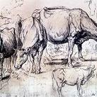 Rubens - Study of Cows