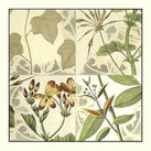 Vision Studio - Botanical Quadrant III