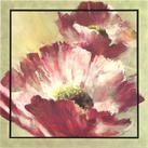 Brent Heighton - Lush Poppy