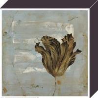 Dysart - Tulip Dream I