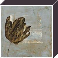 Dysart - Tulip Dream II