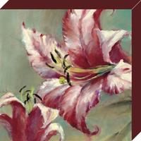Brent Heighton - Blooming Lily