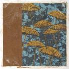 Chariklia Zarris - Golden Yarrow I