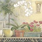 Adelene Fletcher - Orchid