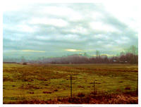 Danielle Harrington - Landscape II