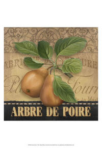 Abby White - French Pears