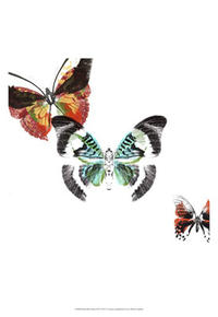 A. Project - Butterflies Dance III