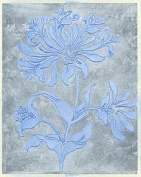 Jennifer Goldberger - Silver Leaf Floral II