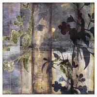 Jennifer Goldberger - Lace & Light III
