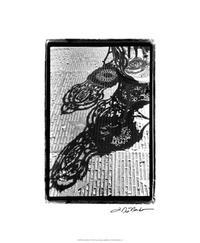 Laura DeNardo - Cafe Shadows I