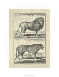 Denis Diderot - Lion & Tiger
