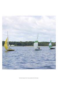 A. Project - Water Racing III