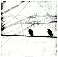 Ingrid Blixt - Silver Days I