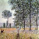 Claude O. Monet - Fields in Spring, 1884